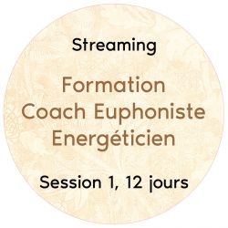 """Streaming Session 1, 12 jours """"Formation CEE"""""""