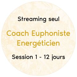 "Streaming, Session 1, 12 jours ""Formation Coachs Euphonistes Energéticiens"""
